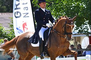 Stress oxydant chez les chevaux athlètes