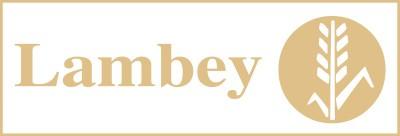LAMBEY S.A.
