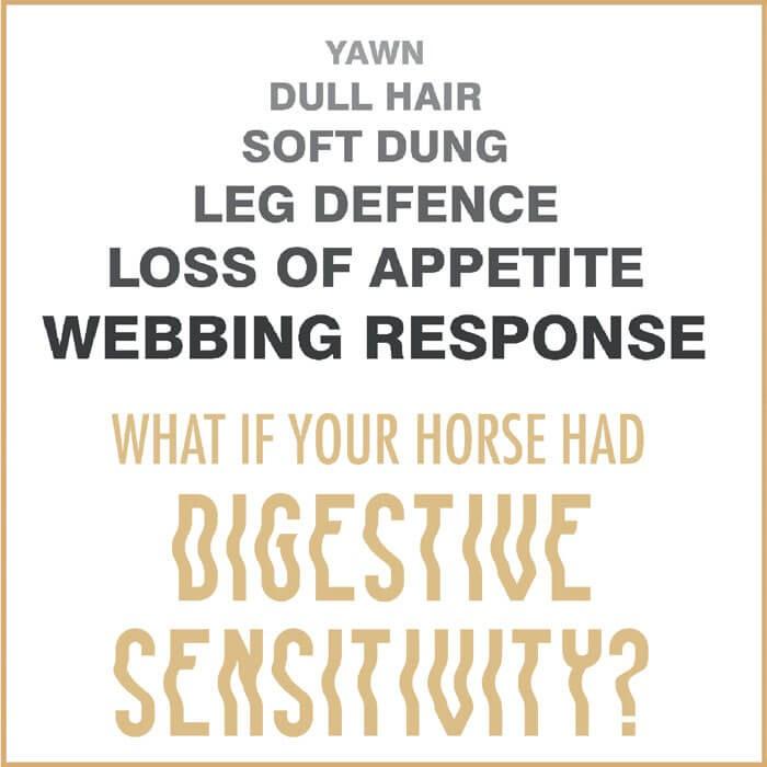 Et si votre cheval présentait une sensibilité gastrique ?